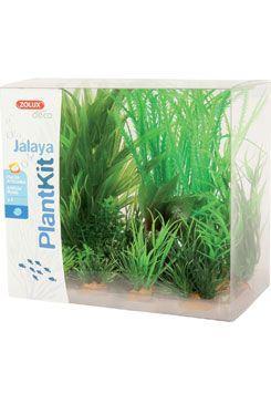 Rostliny akvarijní JALAYA 1 sada Zolux