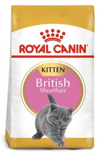 Royal Canin Feline BREED Kitten Br. Shorthair 10kg