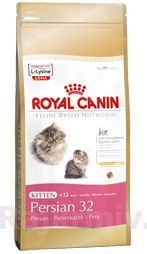 Royal canin Breed Feline Kitten Persian