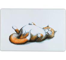 Prostírání s ležící tlustou kočkou 44 x 28 cm