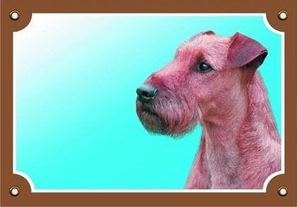 Barevná cedulka Pozor pes Irský teriér