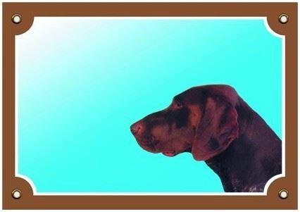 Barevná cedulka Pozor pes Německý ohař hnědý
