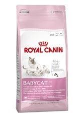 Royal Canin Feline Growth Baby Cat