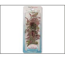 Rostlina Red Ludwigia 23 cm 1ks