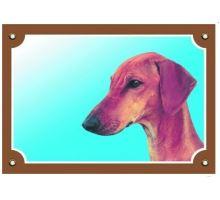 Barevná cedulka Pozor pes Azavak VÝPRODEJ