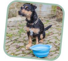Miska pro psa, cestovní, BecoBowl Travel EKO modrá