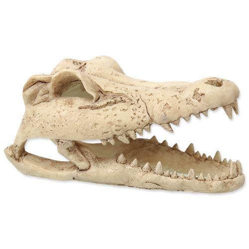 Dekorace REPTI PLANET Krokodýlí lebka 13,8 cm 1ks