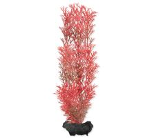 Rostlina TETRA Foxtail Red M